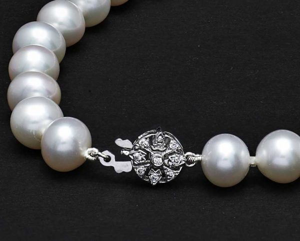 Gold Flower Clasp with Pearl Necklace