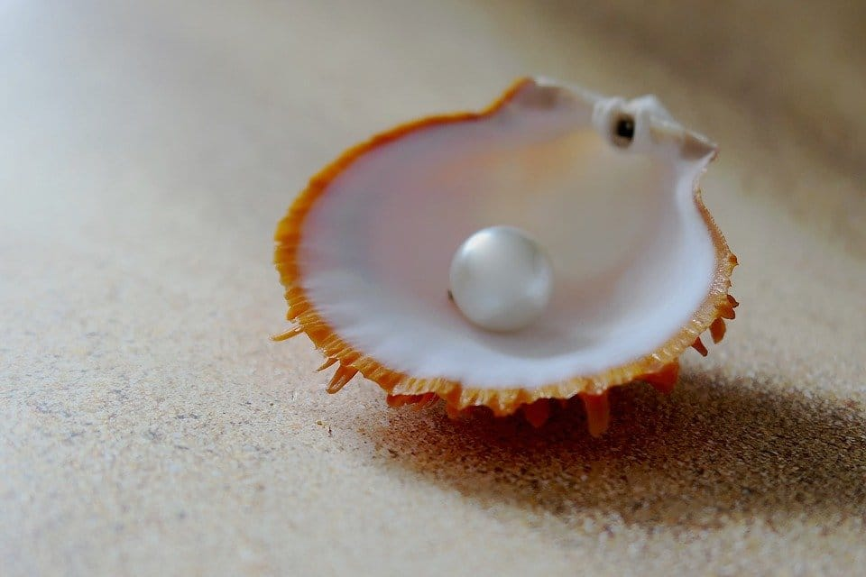 world's oldest pearl